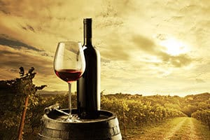 The Top NY Summer Vineyard and Winery Tours